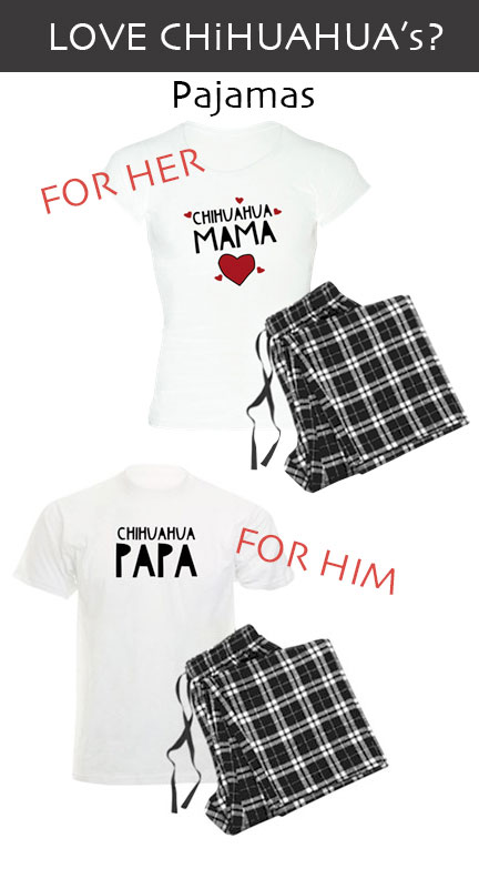 Unique Gift Ideas for Chihuahua Mom and Dad