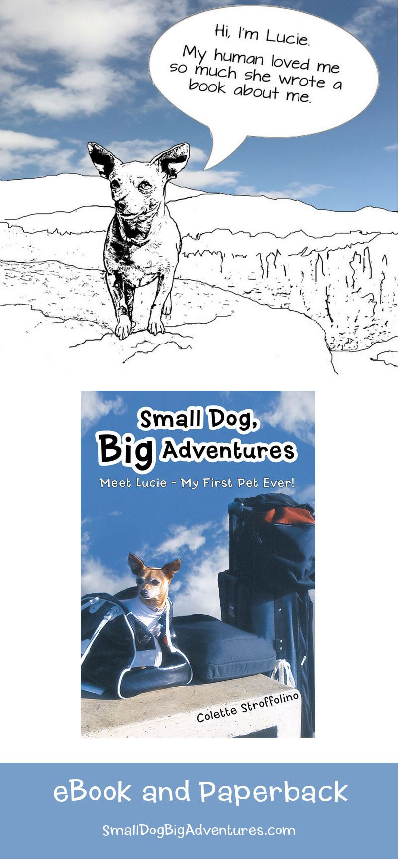 Small Dog Big Adventures - Book about a Chihuahua